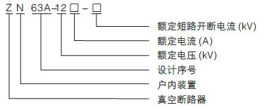 ZN63AVS1-12-01